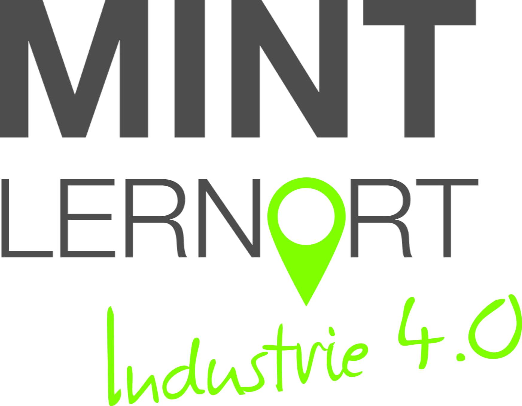 ZDIN-0011_Logo_MintLernort_Industrie_pfad